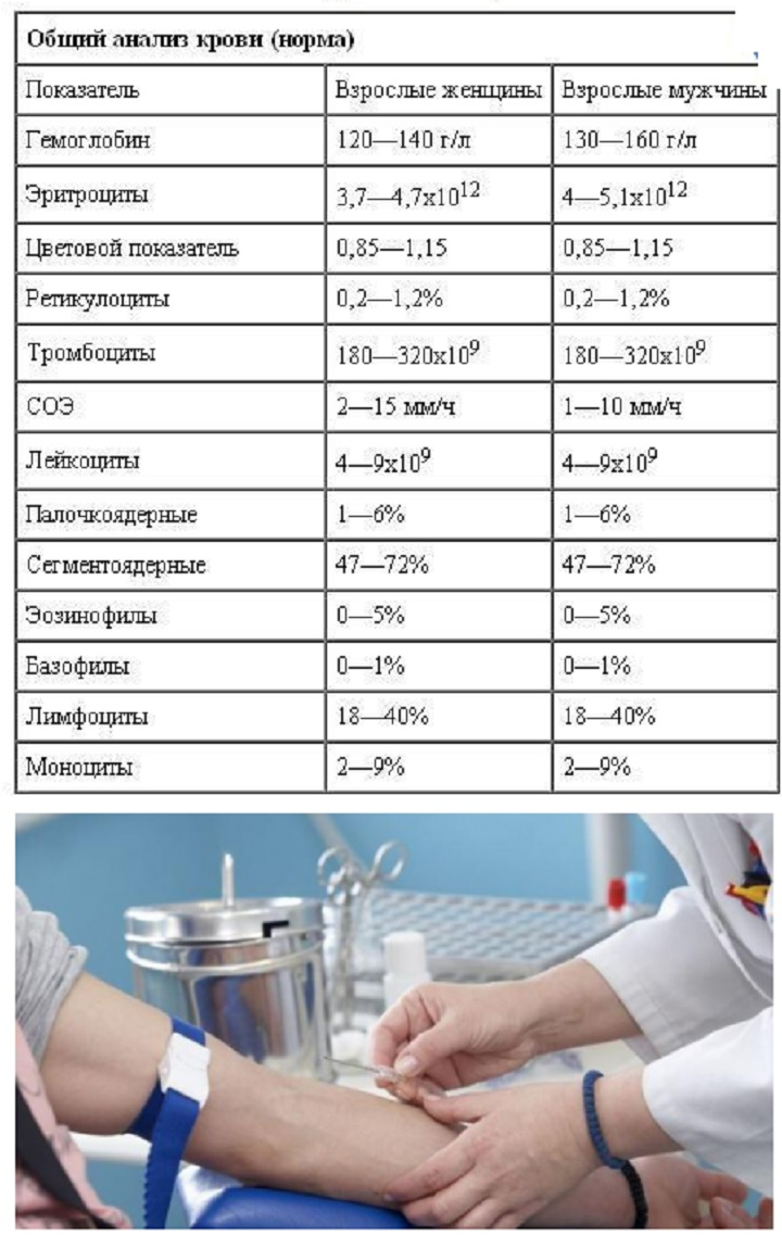 Каких пальца анализов кровь из для что крови lg такое e анализ это