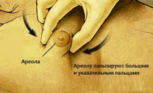 Пальпация груди на предмет новообразований