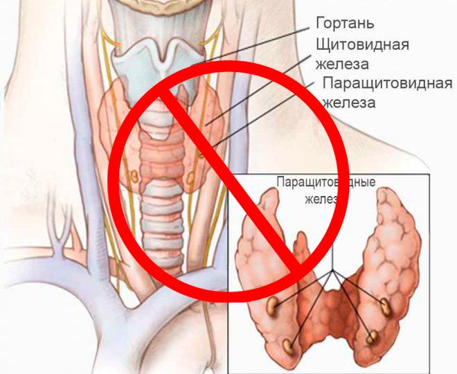 Запрещено делать блефаропластику при заболеваниях щитовидной железы