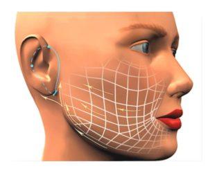 Макет пролегания нитей по лицу
