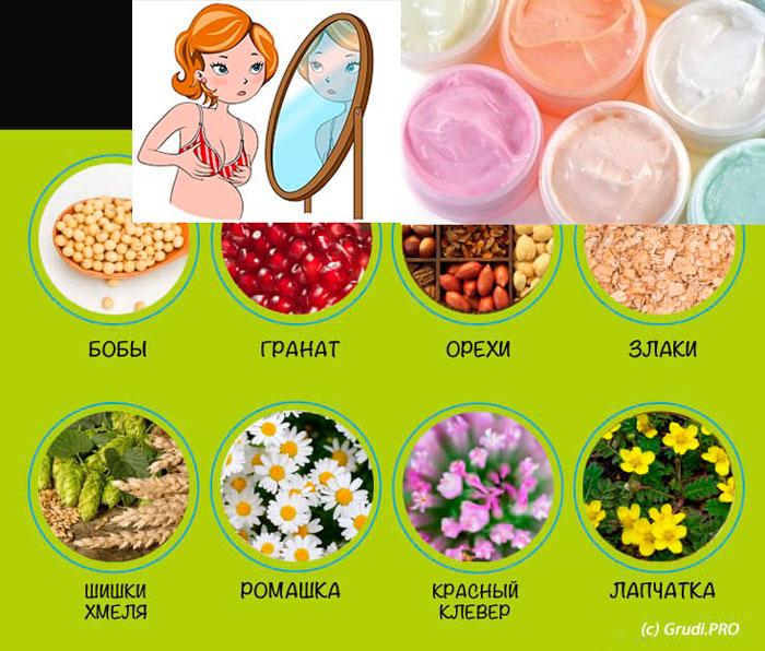 Крема фитоэстрогены и размер груди