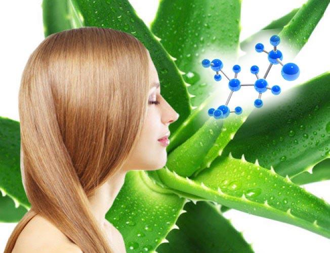 Алоэ и компоненты ботокса для волос