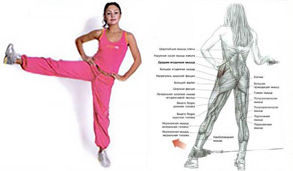 Упражнение для мышц бедер стоя