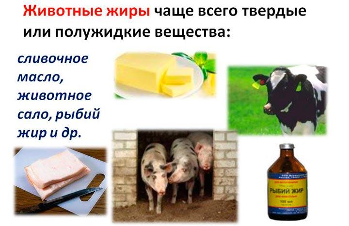 Ограничение в пище жиров животного происхождения