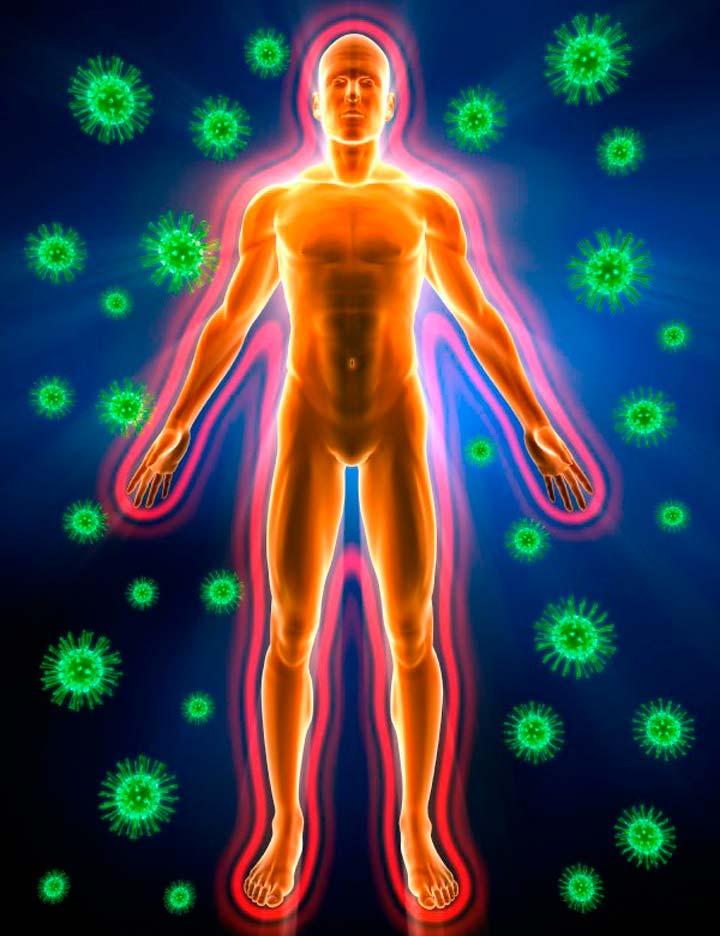 Укрепление иммунных сил организма человека