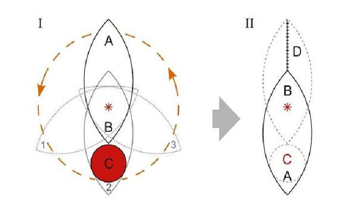 Схема разреза кожи при ротации