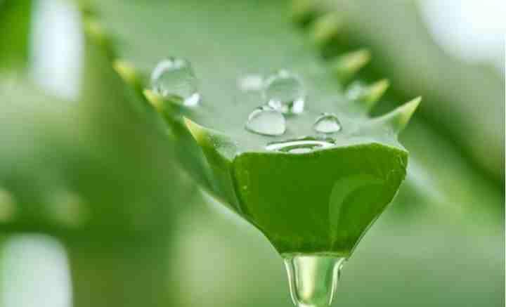 Гиалуроновая кислота содержится в организме с самого рождения