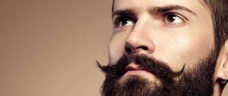 Затем подобрать тот тип бороды, что будет идти определенному лицу и подчеркнет желаемый вид.